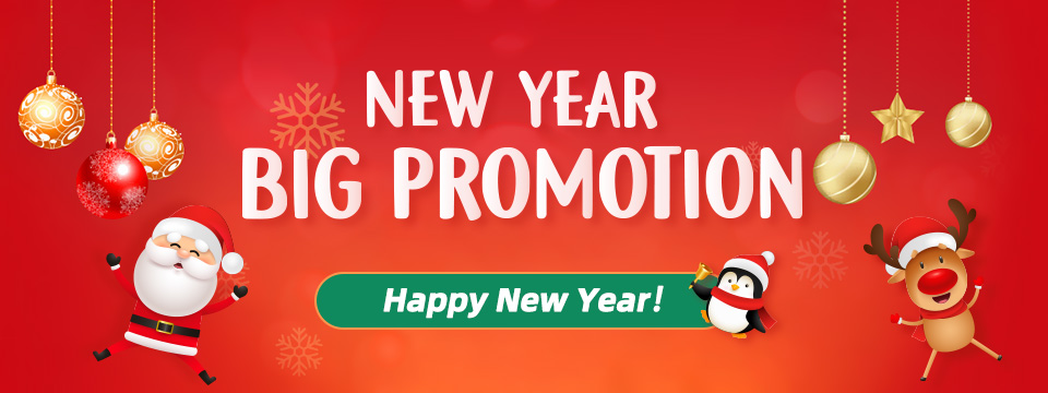 New Year Big Promotion