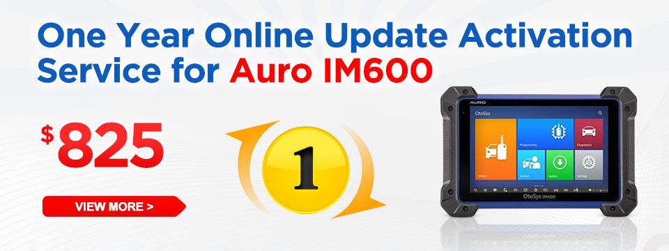 One Year Online Update Activation Service for Auro IM600